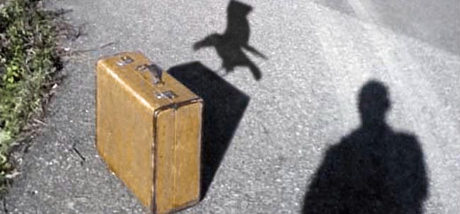 Suitcase shadow